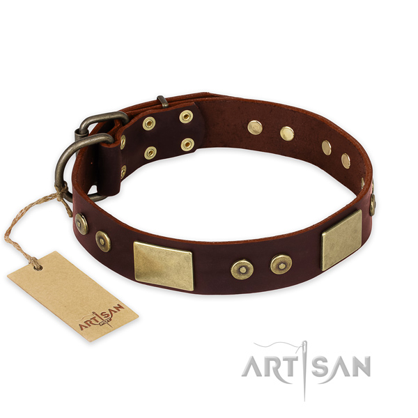 Unique full grain leather dog collar for everyday walking