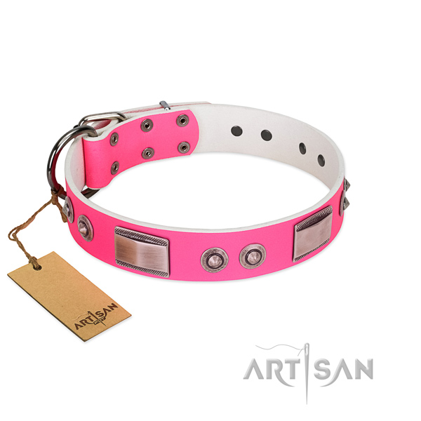 Stylish design dog collar of natural leather with adornments