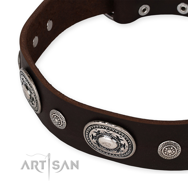 Durable genuine leather dog collar made for your beautiful four-legged friend