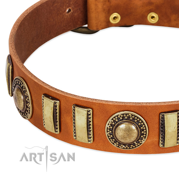 Quality leather dog collar with corrosion resistant fittings
