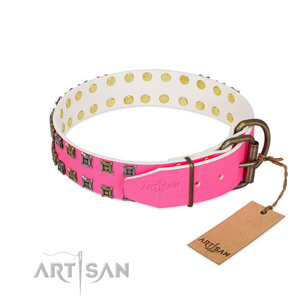 Leather collar with top notch decorations for your canine