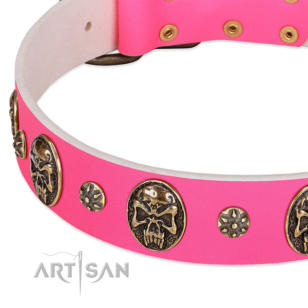 Decorated dog collar created for your impressive dog