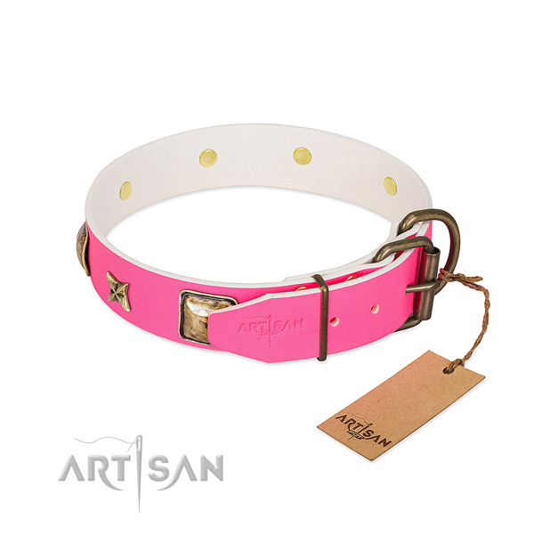 Strong hardware on leather collar for fancy walking your pet