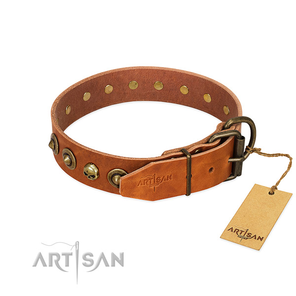 Leather collar with remarkable decorations for your dog