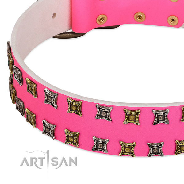 Natural leather dog collar with unique embellishments