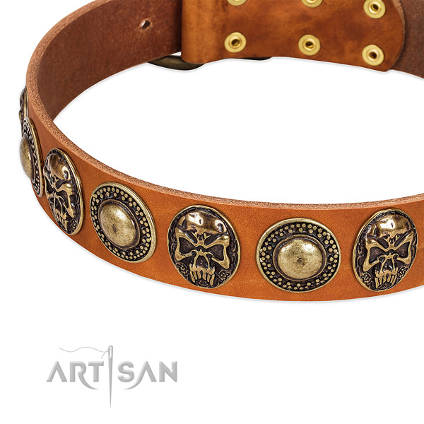 Rust-proof hardware on natural leather dog collar for your dog
