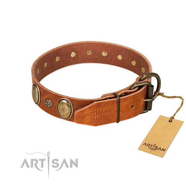 Everyday walking best quality genuine leather dog collar
