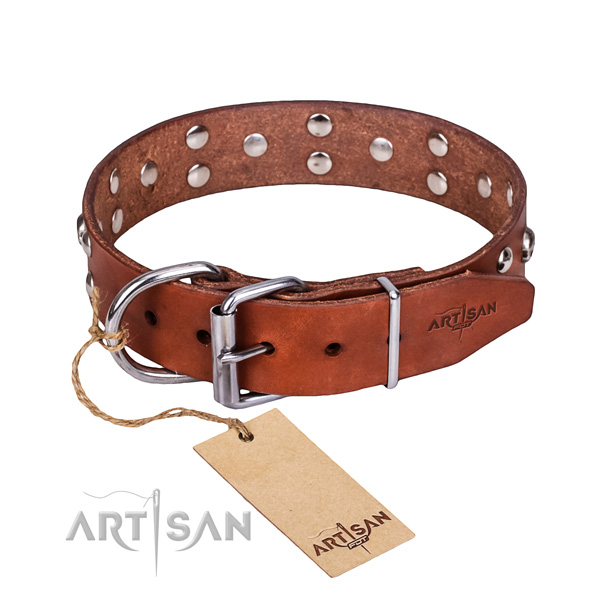 Daily use dog collar of fine quality natural leather with decorations