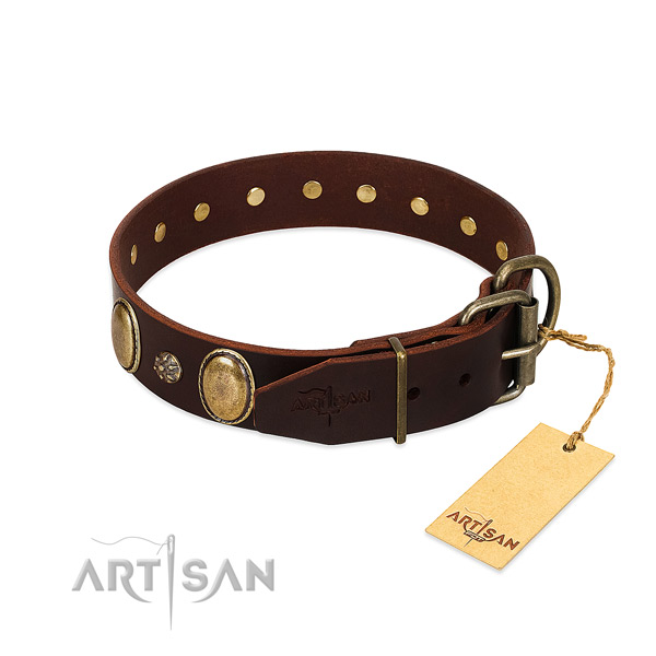 Walking top rate full grain leather dog collar