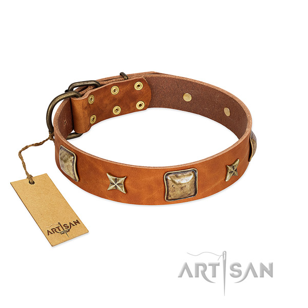Fashionable leather collar for your pet