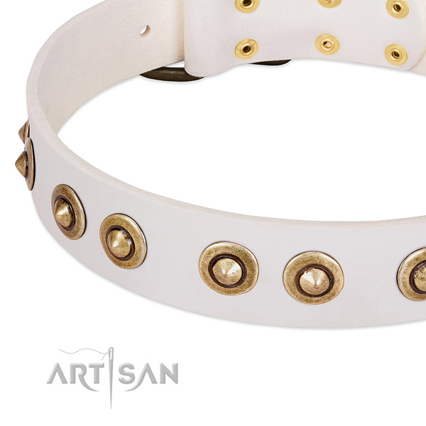 Corrosion resistant embellishments on full grain natural leather dog collar for your dog