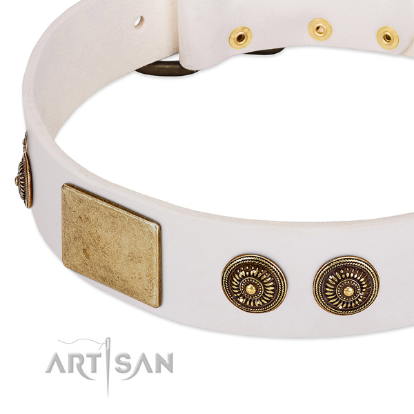 Embellished dog collar made for your impressive dog
