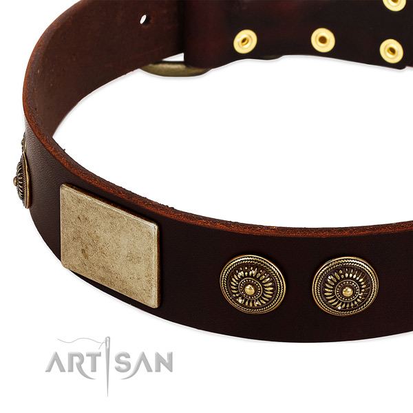 Strong decorations on full grain natural leather dog collar for your dog