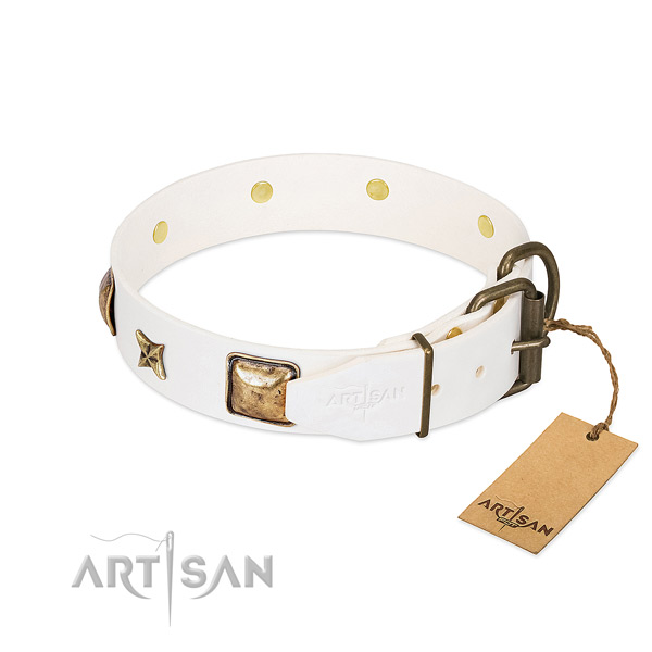 Full grain natural leather dog collar with corrosion resistant fittings and embellishments