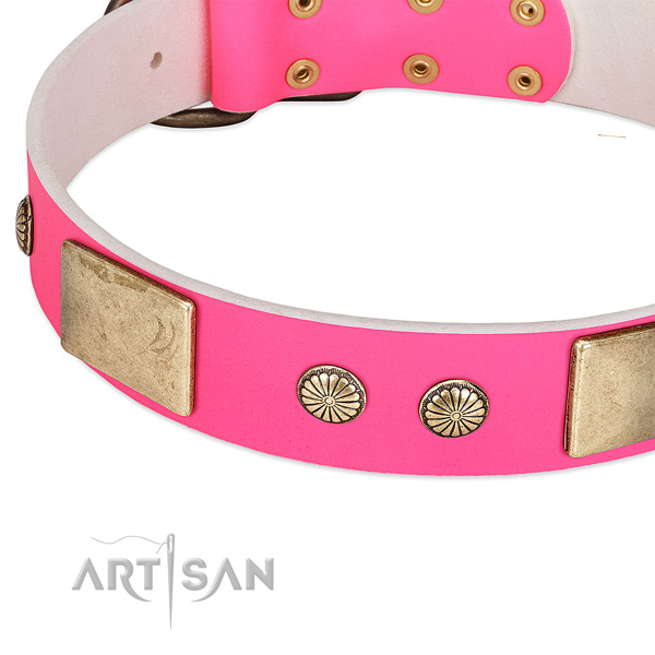Reliable embellishments on full grain leather dog collar for your pet