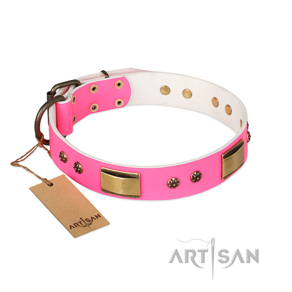 Extraordinary leather collar for your pet