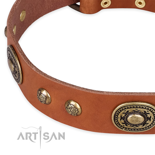Awesome natural leather collar for your beautiful dog
