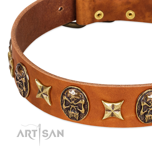Strong D-ring on natural genuine leather dog collar for your four-legged friend