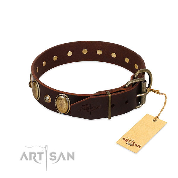 Rust-proof hardware on genuine leather collar for stylish walking your pet
