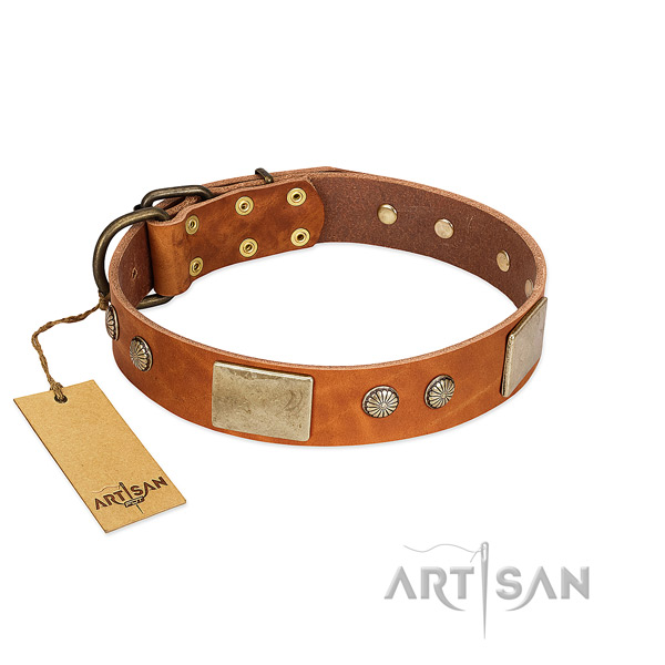 Adjustable leather dog collar for everyday walking your canine