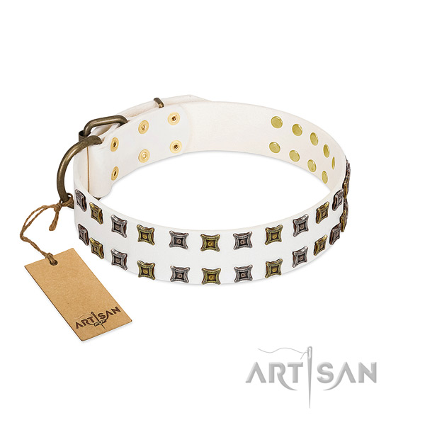 Full grain natural leather collar with designer embellishments for your dog