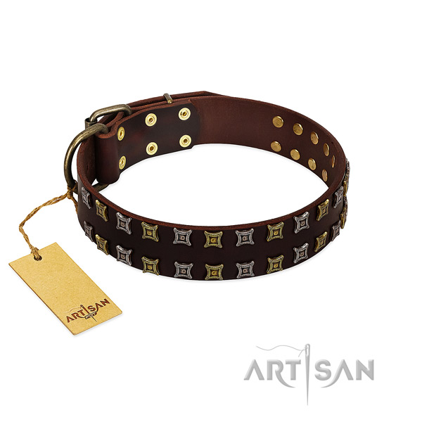Quality natural leather dog collar with embellishments for your canine