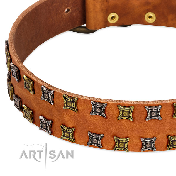 Best quality full grain genuine leather dog collar for your handsome canine