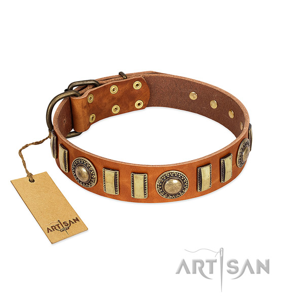 Awesome full grain genuine leather dog collar with rust-proof fittings