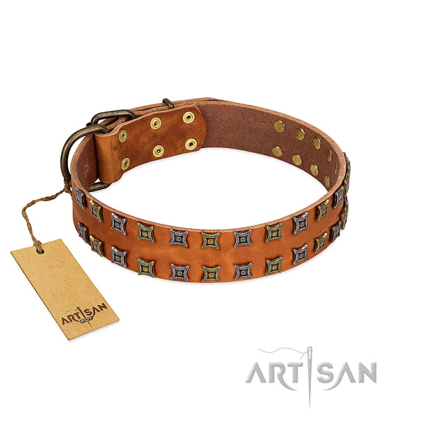 Durable natural leather dog collar with adornments for your pet