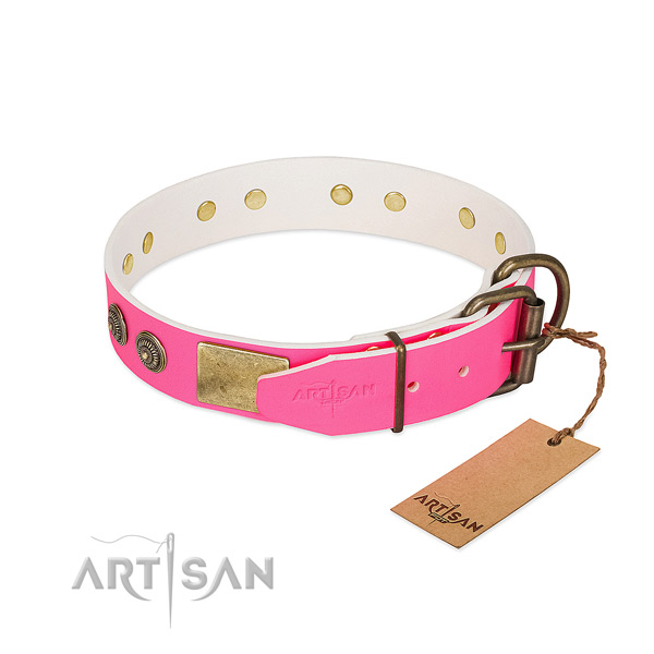 Durable hardware on natural genuine leather collar for fancy walking your four-legged friend
