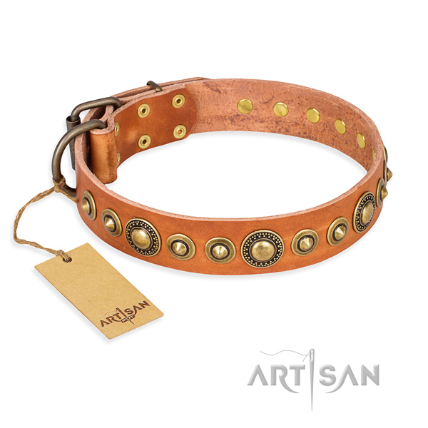 Best quality leather collar created for your four-legged friend