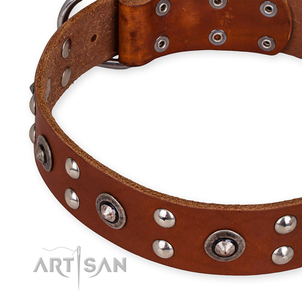 Full grain genuine leather collar with corrosion proof traditional buckle for your attractive doggie