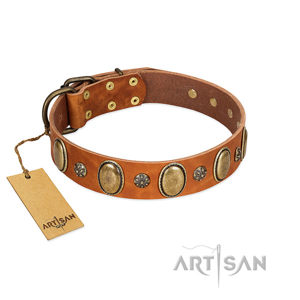 Fancy walking gentle to touch leather dog collar with adornments
