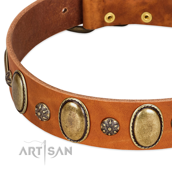 Easy wearing top notch genuine leather dog collar