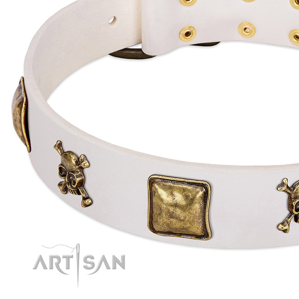 Daily use full grain genuine leather dog collar with designer embellishments