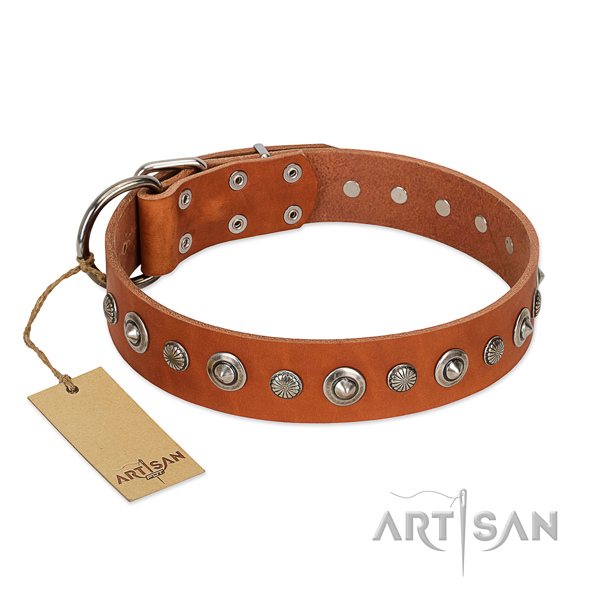 Top quality full grain genuine leather dog collar with remarkable studs