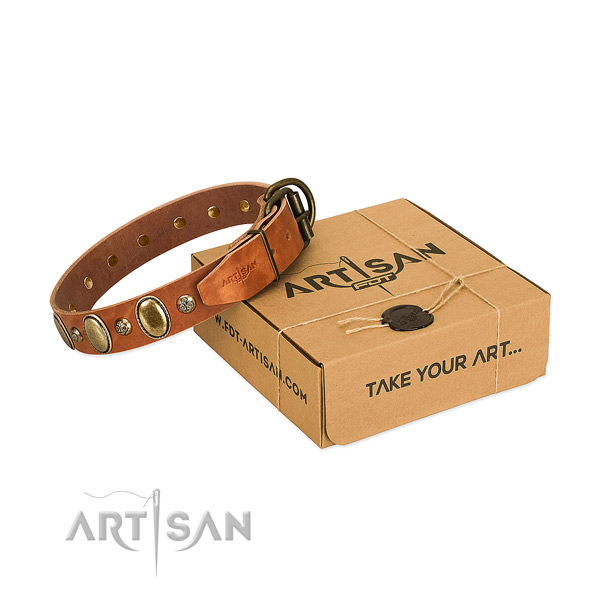 Remarkable full grain leather dog collar with corrosion resistant hardware