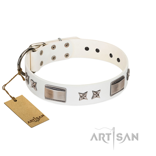 Stylish design dog collar of leather