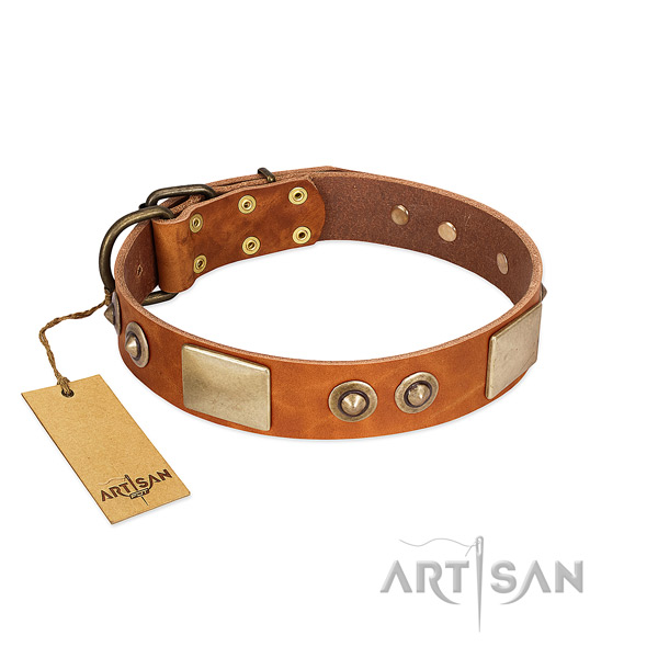 Easy adjustable genuine leather dog collar for daily walking your canine