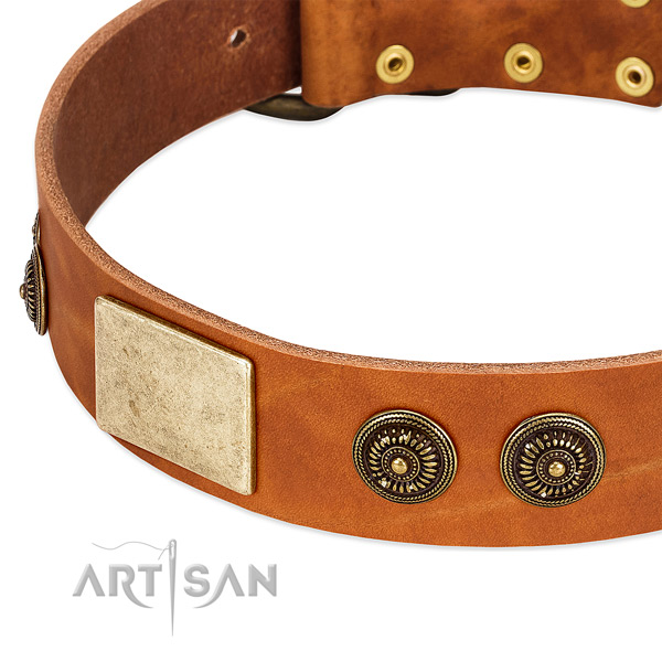 Perfect fit dog collar handcrafted for your stylish dog