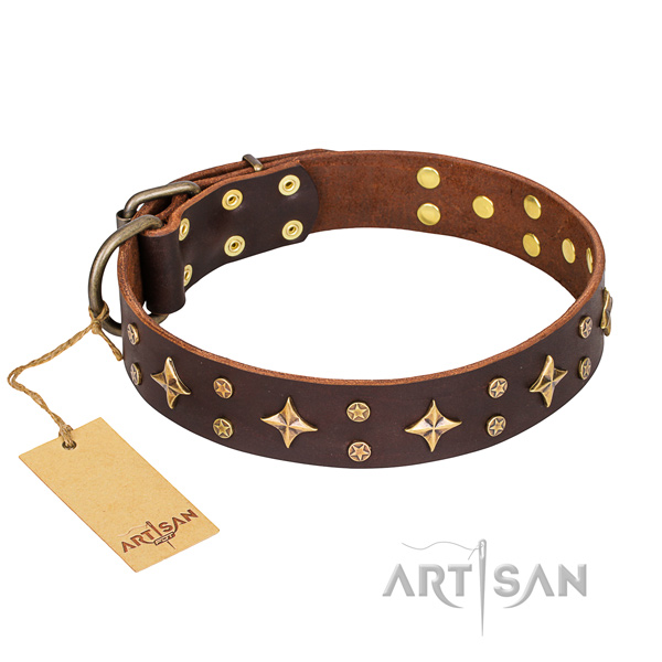 Basic training dog collar of top notch full grain leather with decorations