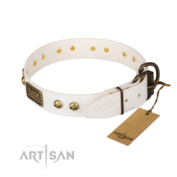 Adjustable full grain leather dog collar for walking your canine