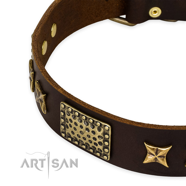 Full grain leather collar with corrosion proof buckle for your stylish canine
