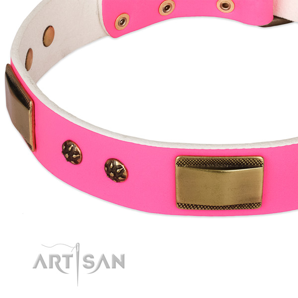Reliable fittings on full grain leather dog collar for your pet