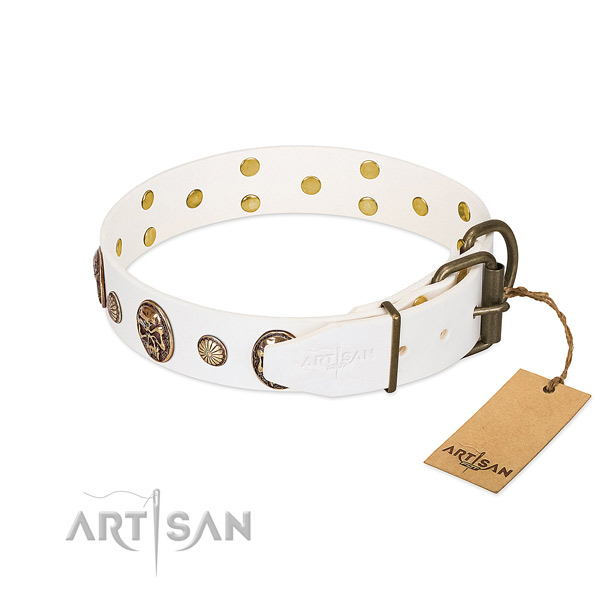 Strong D-ring on full grain genuine leather collar for fancy walking your four-legged friend