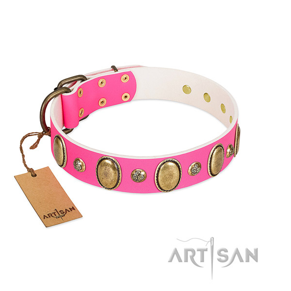Walking soft full grain natural leather dog collar with decorations