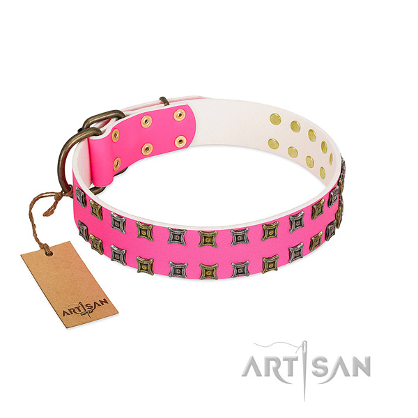 Leather collar with unusual decorations for your four-legged friend