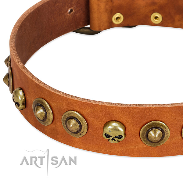 Stunning adornments on full grain natural leather collar for your dog
