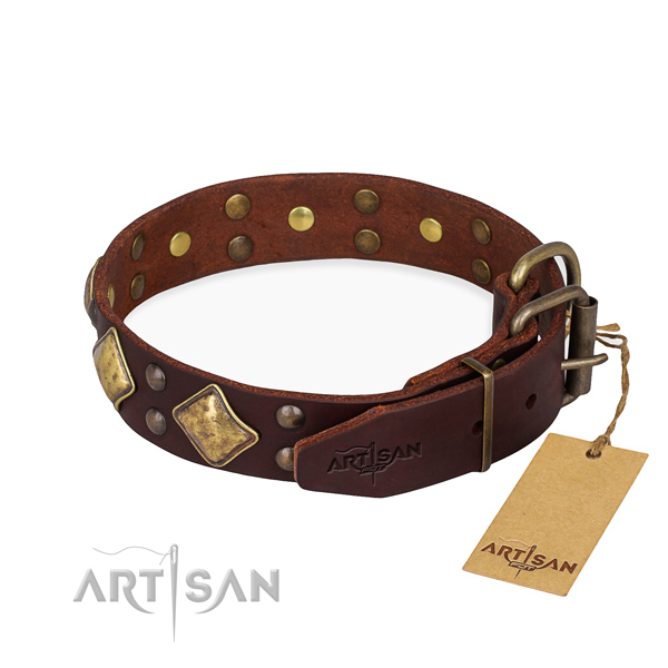Genuine leather dog collar with incredible rust resistant embellishments