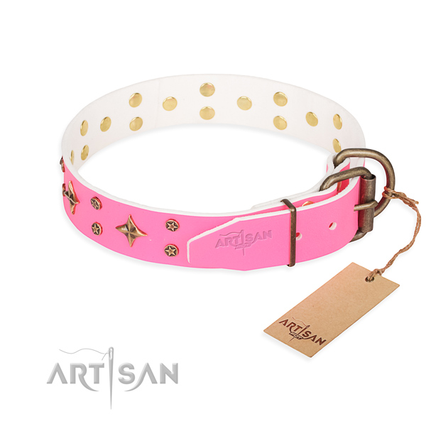 Daily use studded dog collar of finest quality full grain natural leather